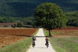 Via-francigena-bike-san-gimignano-siena-02