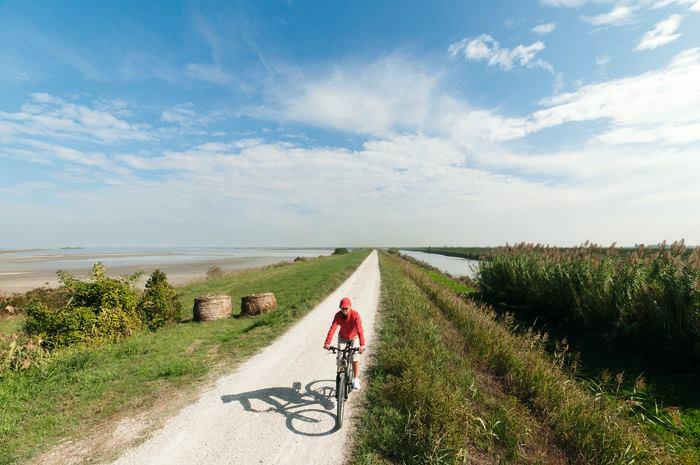 Foto di una bicicletta nella zona del Delta de Po in provincia di Ferrara