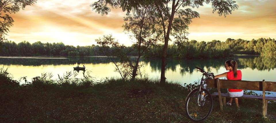 In Veneto ogni provincia offre diversi percorsi cicloturistici di facili da percorre anche con la famiglia