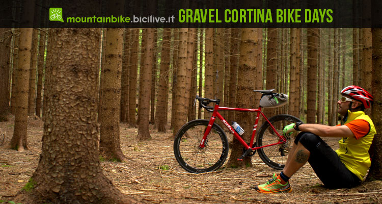 gravel_cortina_bike