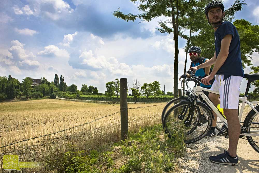 cicloturismo-terre-custoza-bike-experience-11.jpg