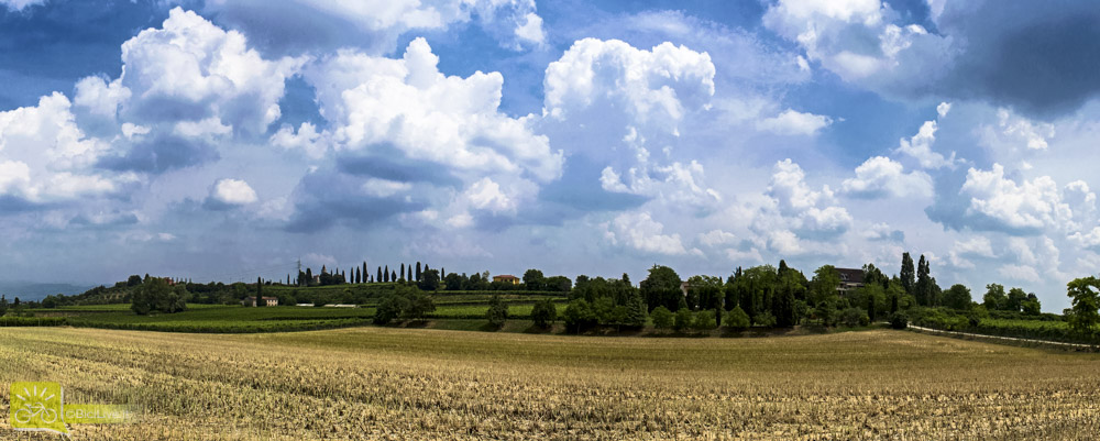 foto del panorama delle Terre del Custoza