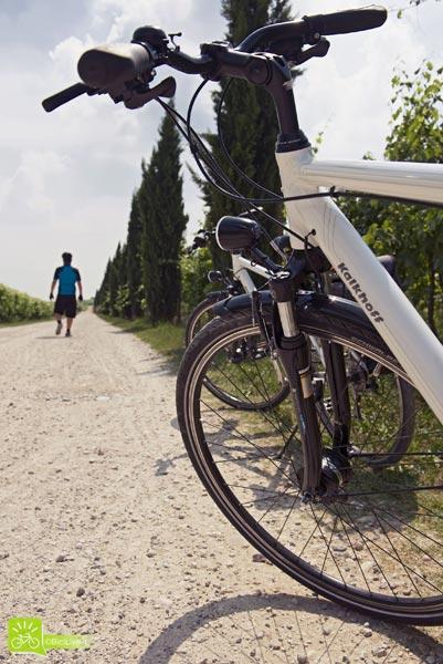 Un tratto di strada lungo il percorso