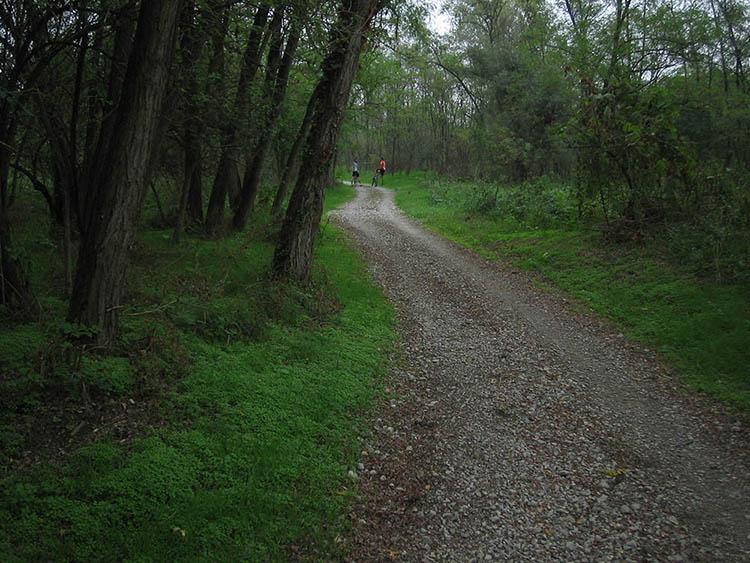 Foto di sentiero sul tracciato della Lodi-Lecco-Lodi