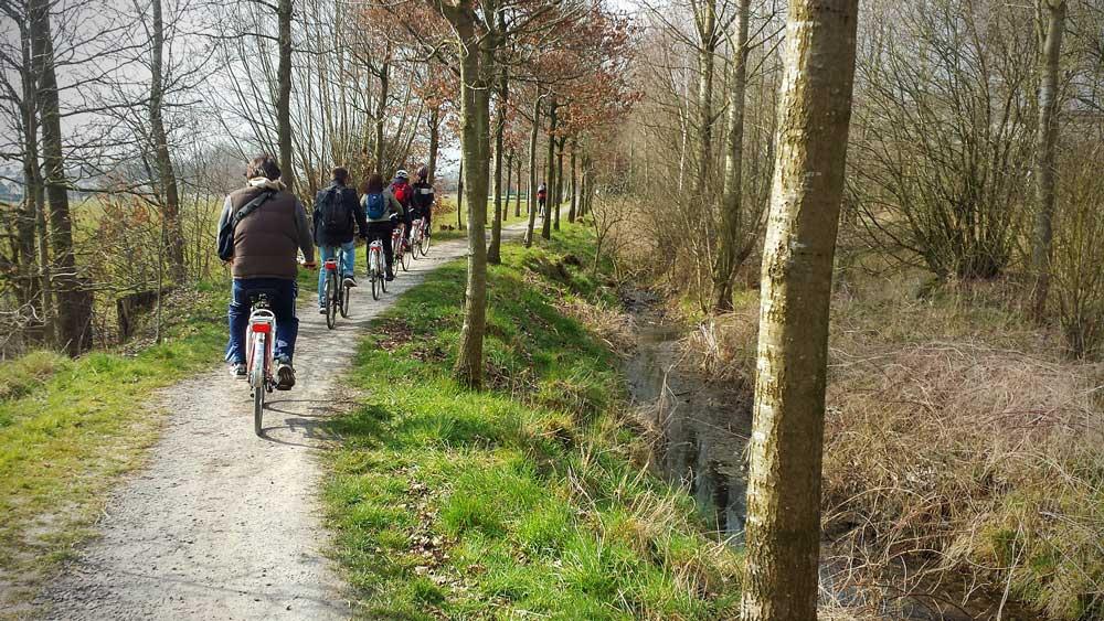 Pista ciclabile lungo corso d'acqua nelle Fiandre