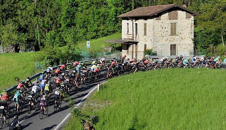 gruppo di ciclisti sale durante la granfondo Bianchi Gimondi
