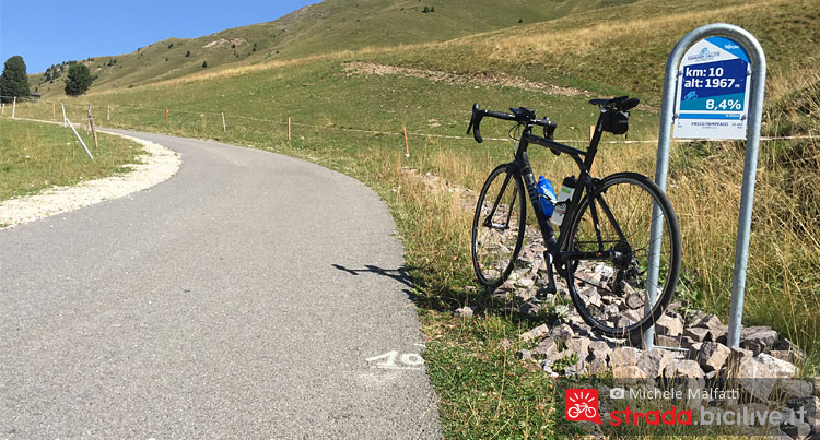 prati e pascoli salendo all'alpe di pampeago in bici