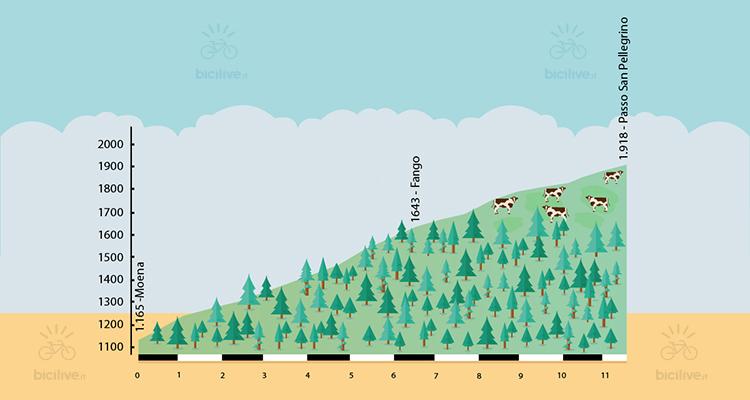 altimetria della salita al passo san pellegrino nelle dolomiti