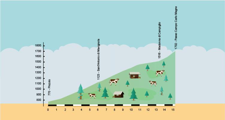 altimetria della salita in bici da Pinzolo a Madonna di Campiglio