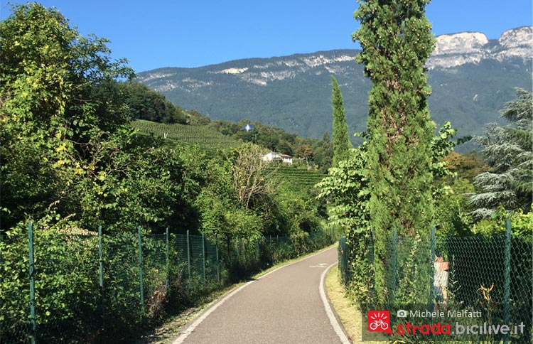 vigneti e meleti lungo la ciclabile sull'Adige