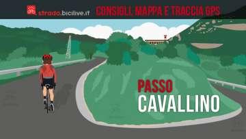 ciclista sulla salita al passo Cavallino