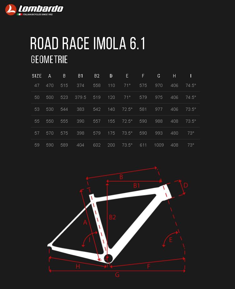 Le geometrie della bici da corsa Lombardo Road Race Imola 6.1