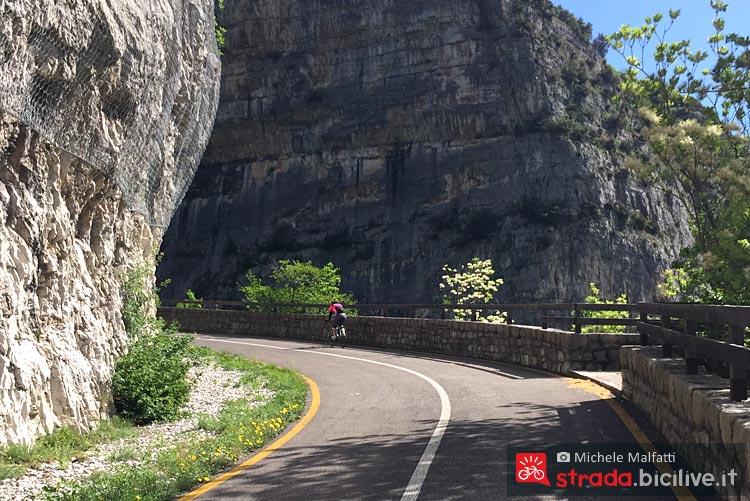 ciclista percorre l'itinerario della ciclabile del Limarò