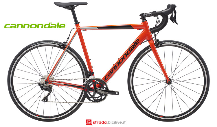 Cannondale CAAD Optimo per il cicloturismo e il commuting