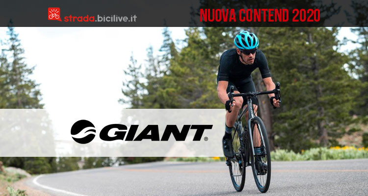 bici giant contend 2020