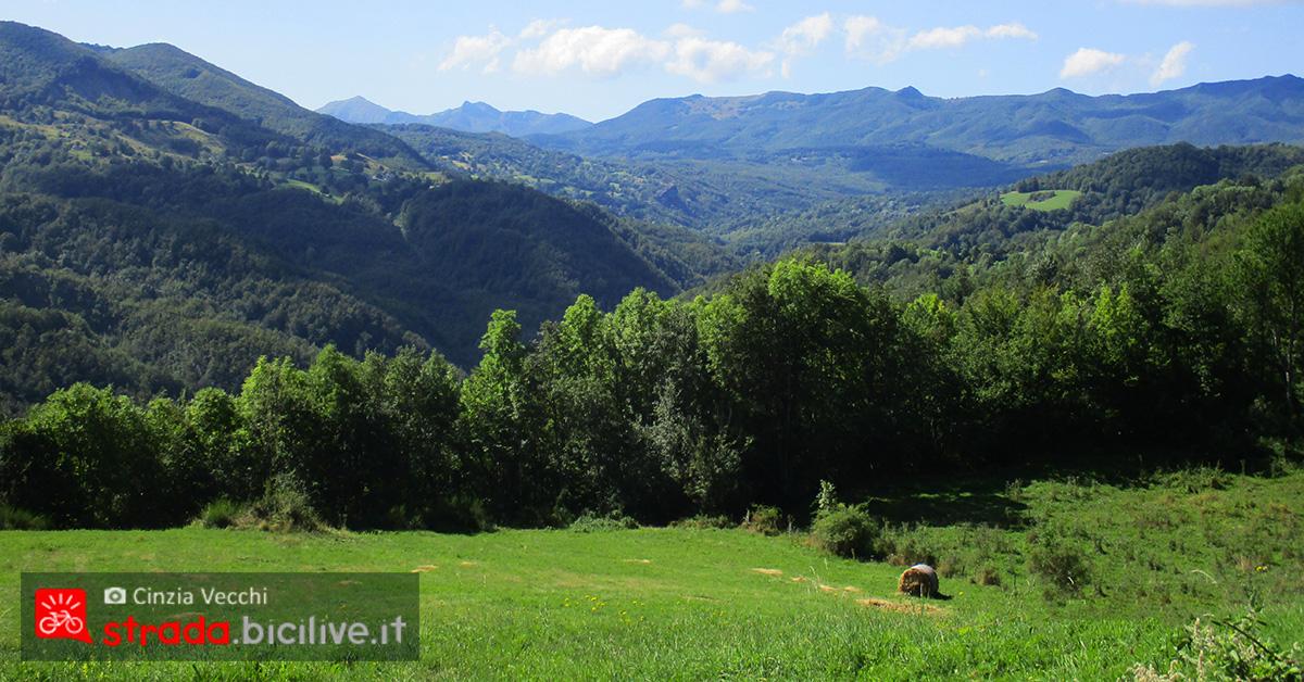 Panorama versante appennino Pievepelago – Abetone