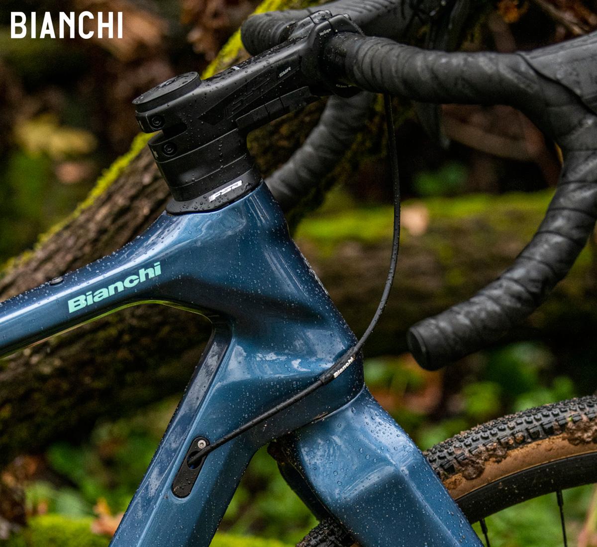 Particolare del telaio della bici Bianchi Arcadex 2021