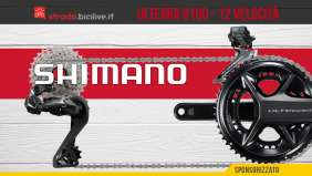 strada-shimano-ultegra-8100-2021-copertina